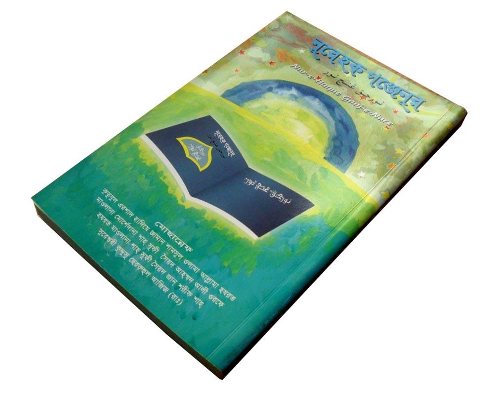 SDSbook1